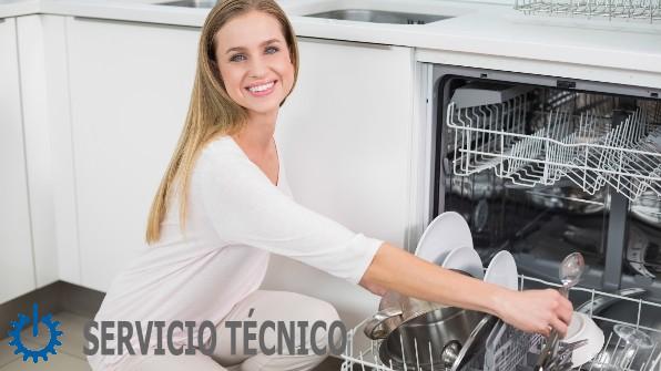 tecnico Zanussi El Vendrell